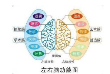 儿童感觉统合发展的4个阶段,你都知道吗?