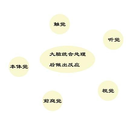 感统失调表现图1